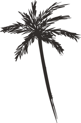 palm-tree-1.png