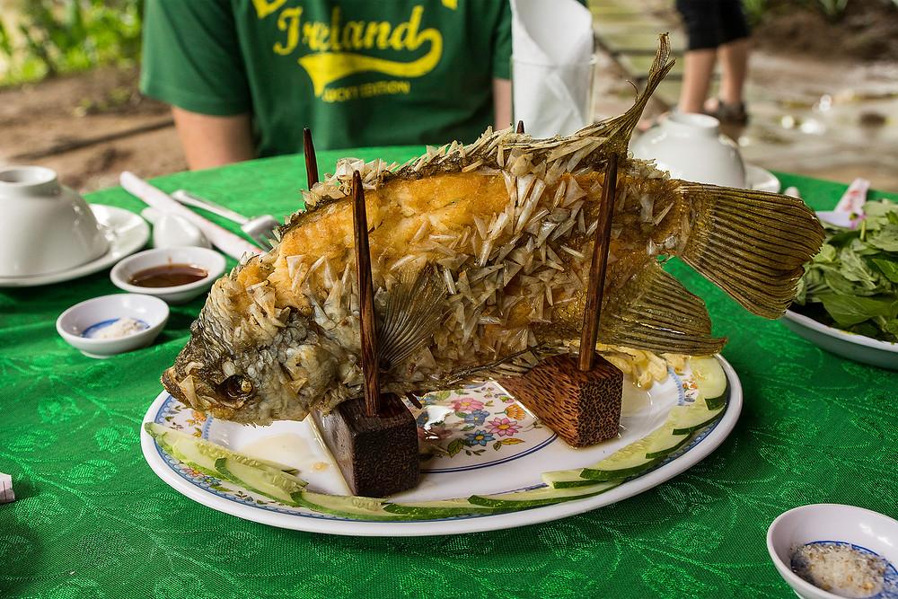Der Elefantenohrfisch wird frittiert und mit den Schuppen gegessen