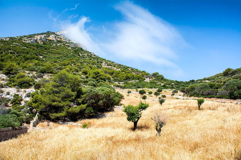 Insel Sa Dragonera Mallorca