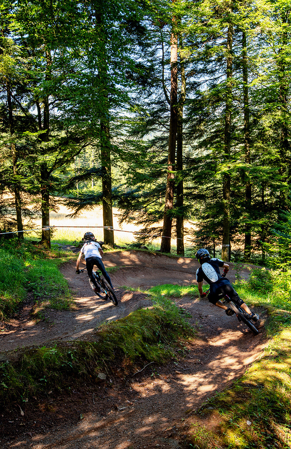 Der Bikepark Bad Wildbad