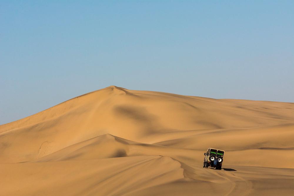 Eine der besten geführten Touren in Namibia ist wohl Tommys Living Desert Tour