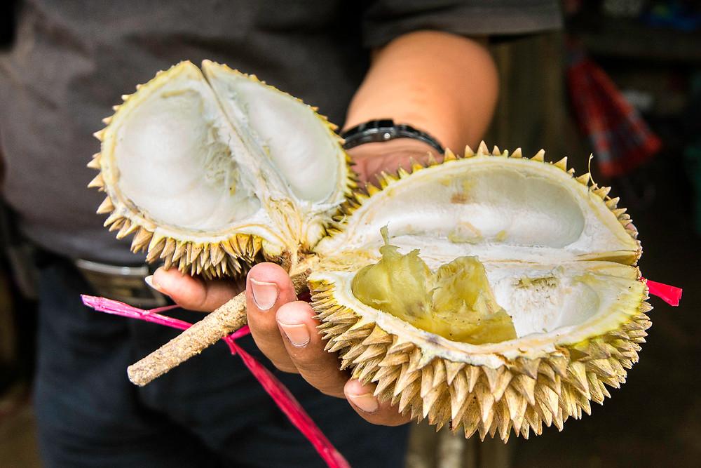 Durian Stinkfrucht Reiseblog