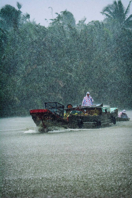 Es regnet Hunde und Katzen im Mekongdelta