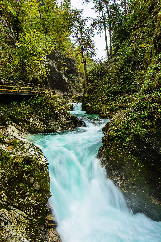 Die Vintgar Klamm ist eines der Highlights auf der Slowenien Tour