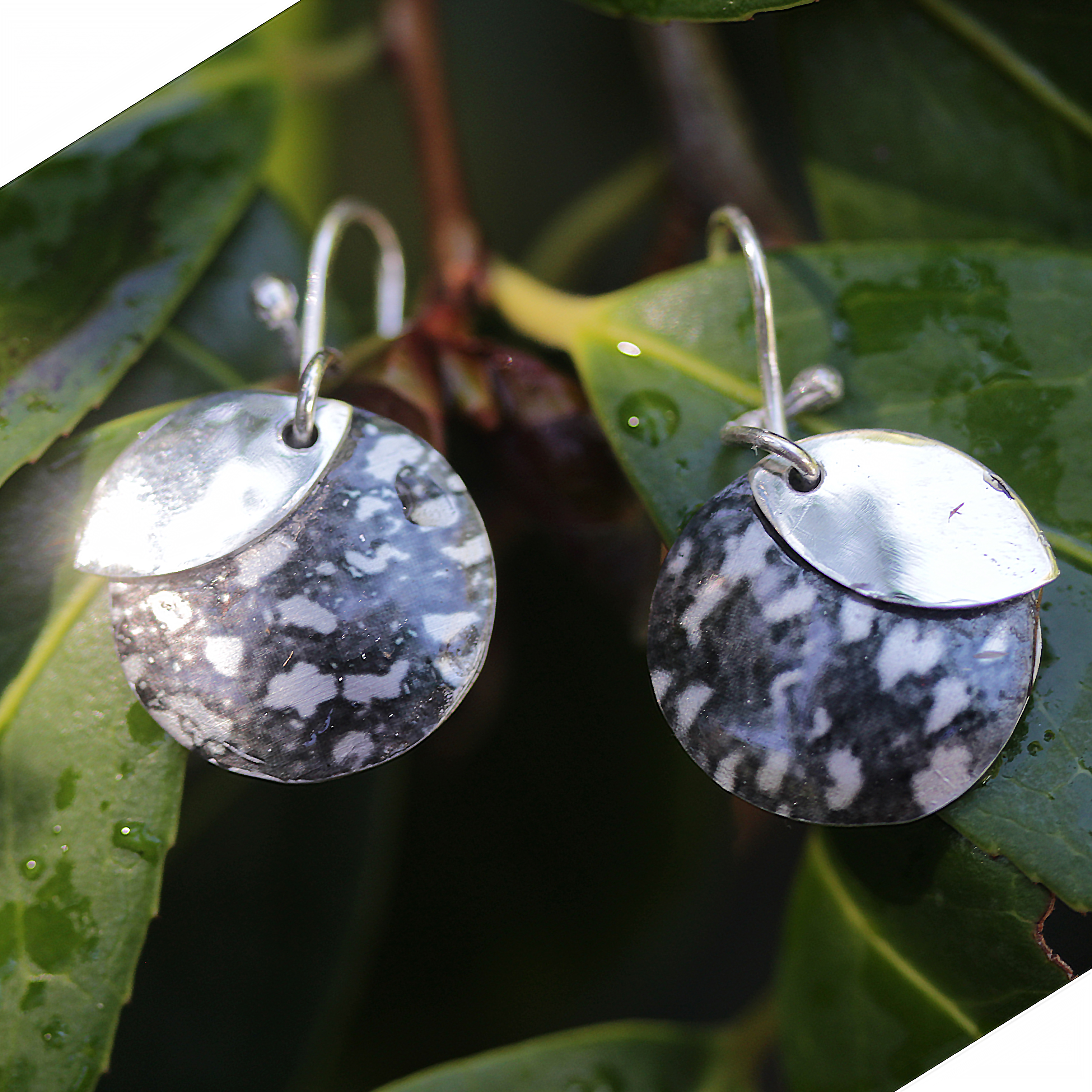 Quoll earrings