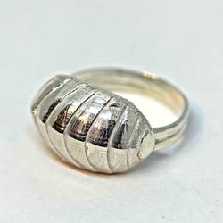 Chiton Ring