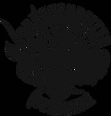 Drachenreiter_Logo_transparent.png