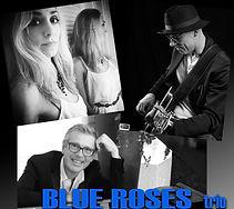 Blue roses trio