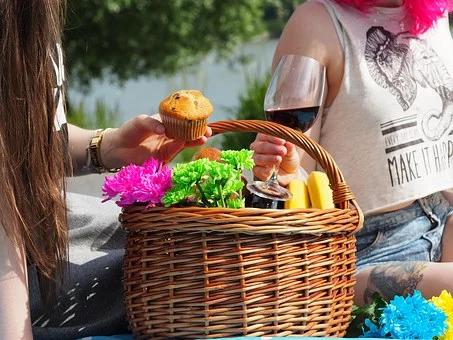 picnic-1456955__340