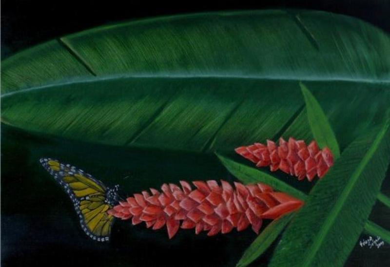 Mariposa