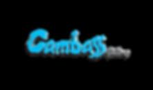 CAMBASS-AZUL ORIGINAL (2).png