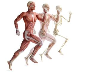 Injury Prevention 101: Sports Massage