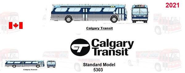 Calgary top.jpg
