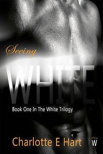 Ebook Cover Seeing White.jpg