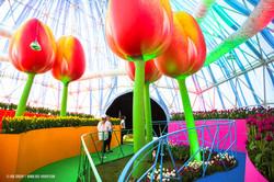 OGE-Flower-Show-Rainbow-12