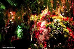 OGE-Flower-Show-Rainforest-3