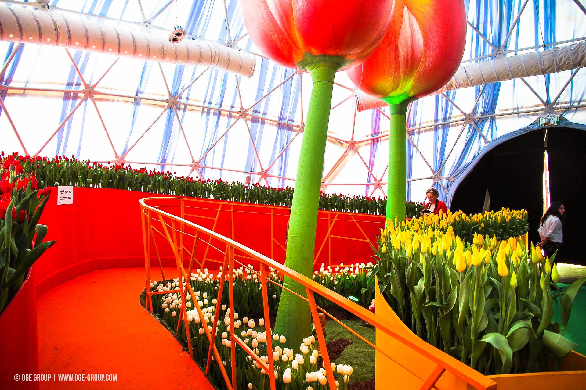OGE-Flower-Show-Rainbow-10