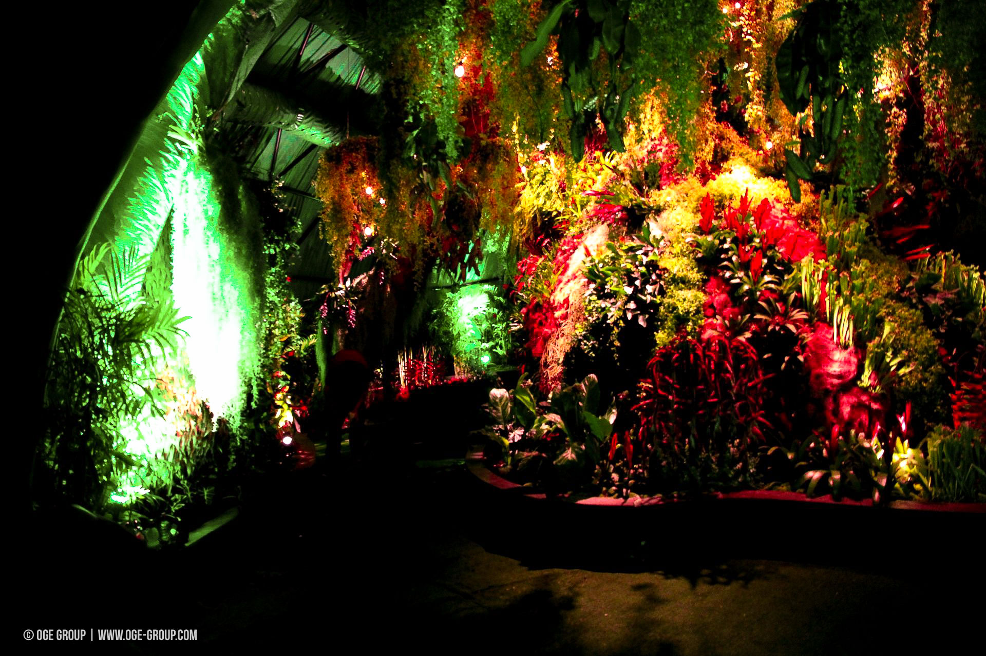 OGE-Flower-Show-Rainforest-10