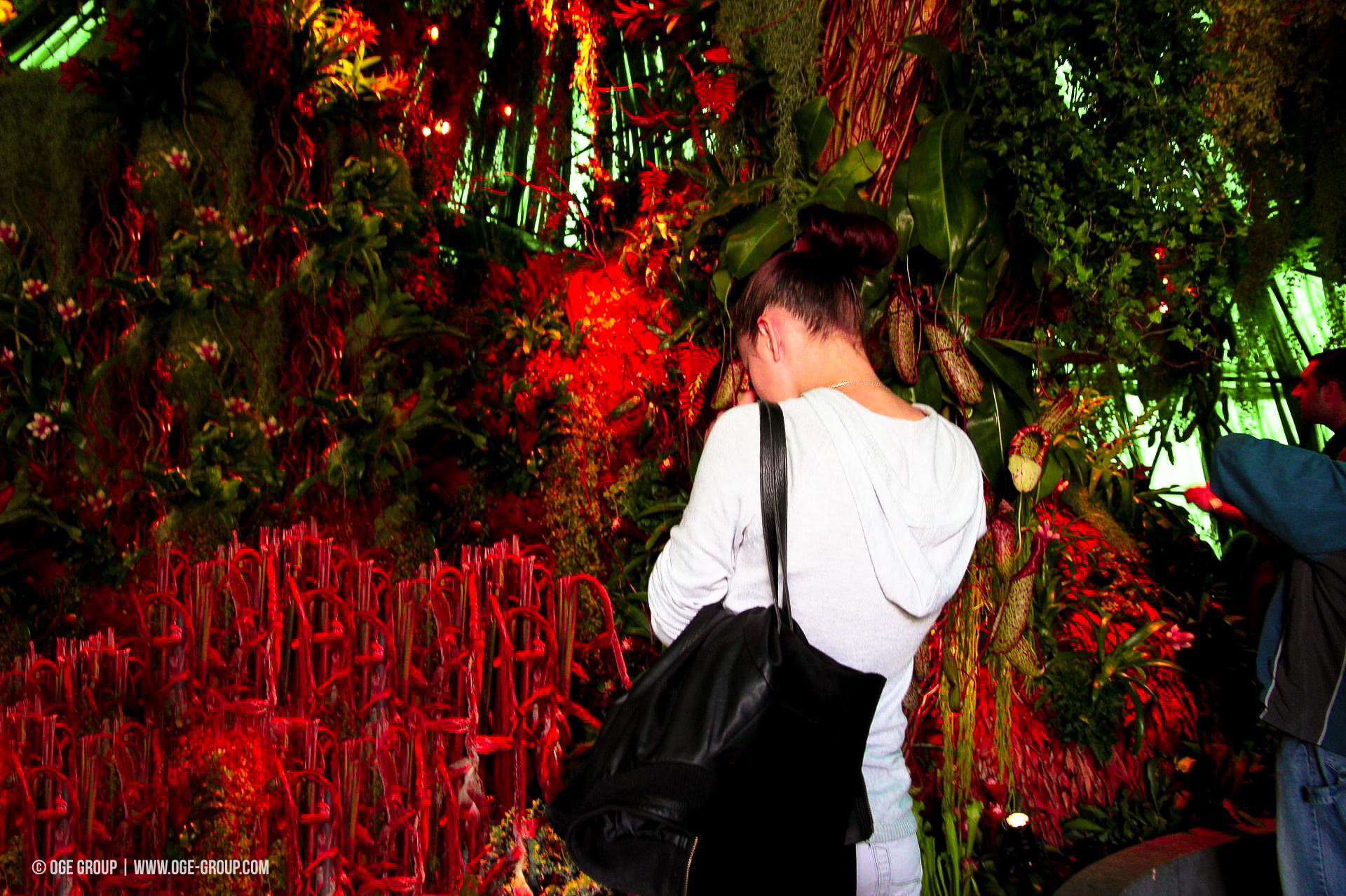 OGE-Flower-Show-Rainforest-12