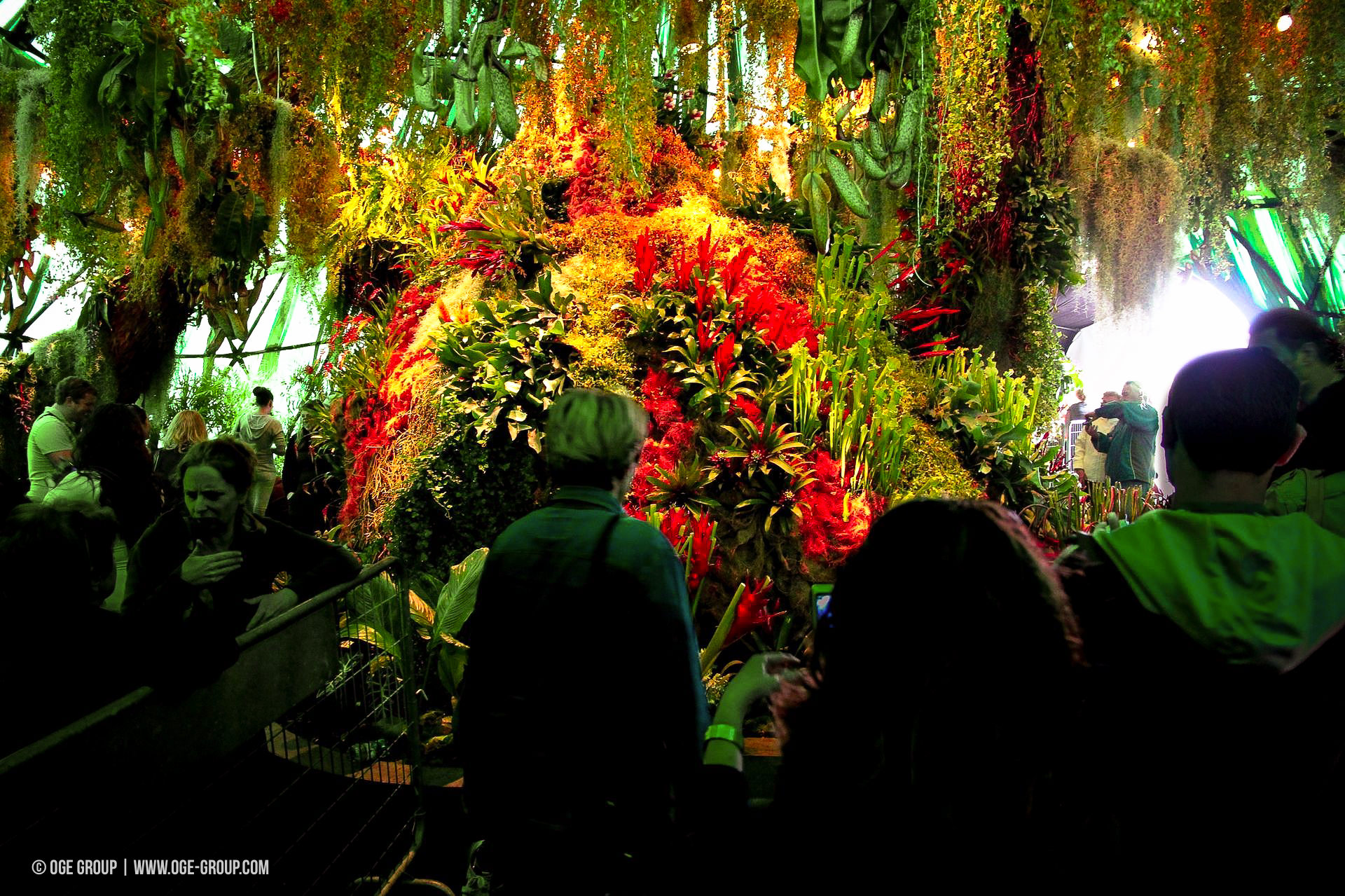 OGE-Flower-Show-Rainforest-11