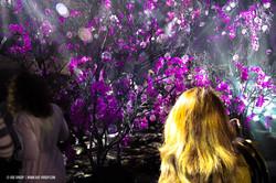 OGE-Flower-Show-upside-15