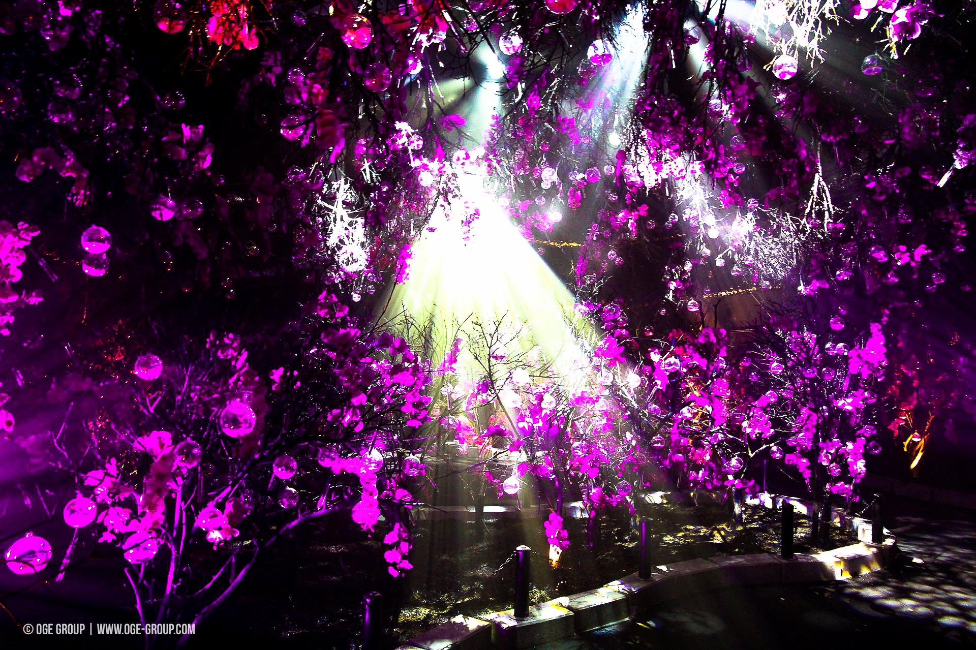 OGE-Flower-Show-upside-6