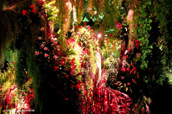 OGE-Flower-Show-Rainforest-6