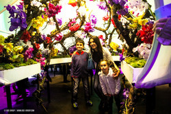 OGE-Flower-Show-Scents-18