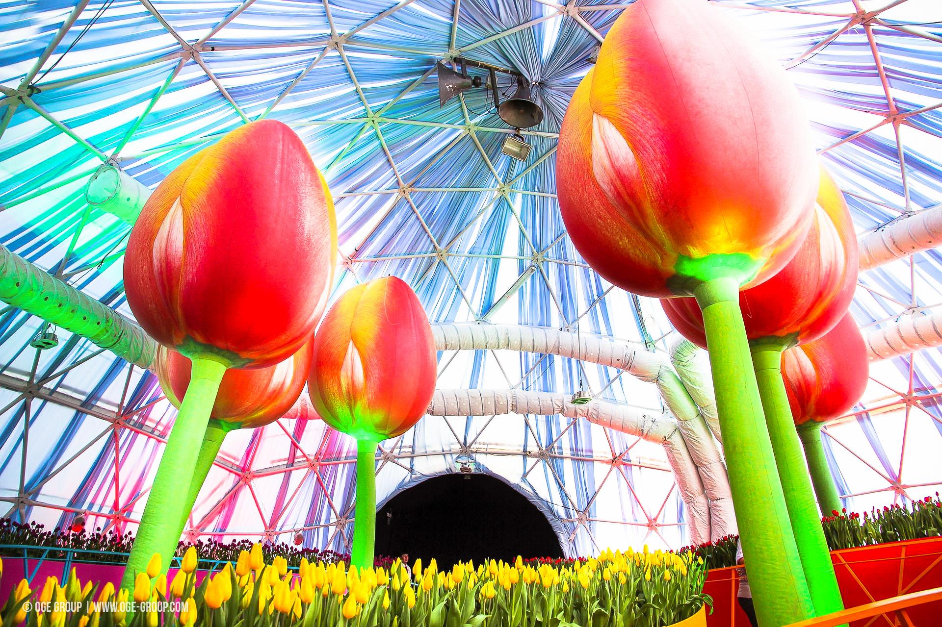 OGE-Flower-Show-Rainbow-9