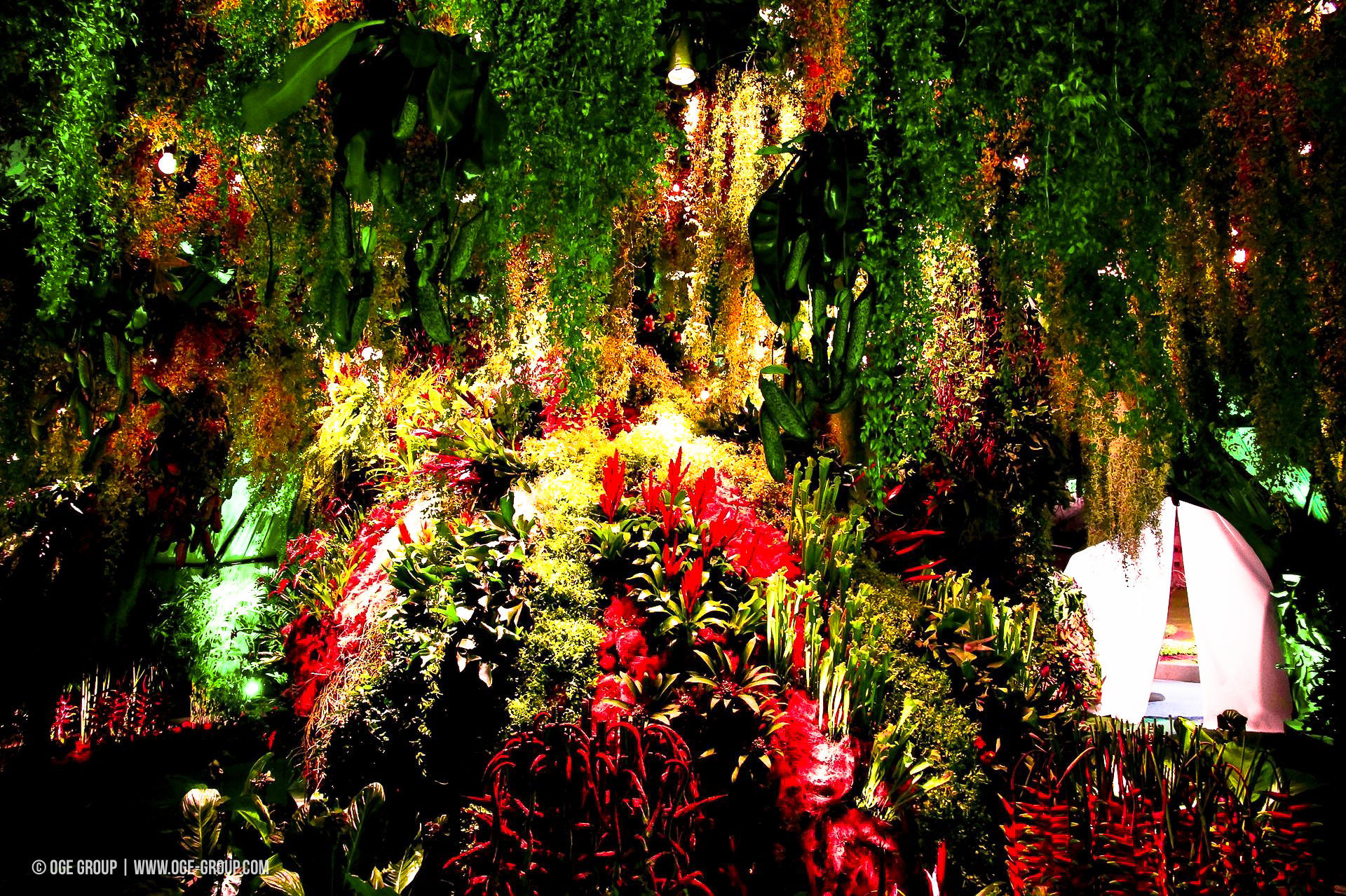 OGE-Flower-Show-Rainforest-2