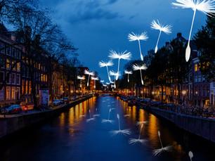 New Light installation: Light a wish!