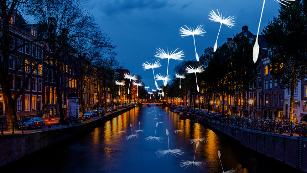 Light A Wish!