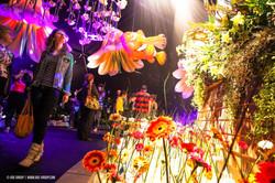 OGE-Flower-Show-Underwater-27