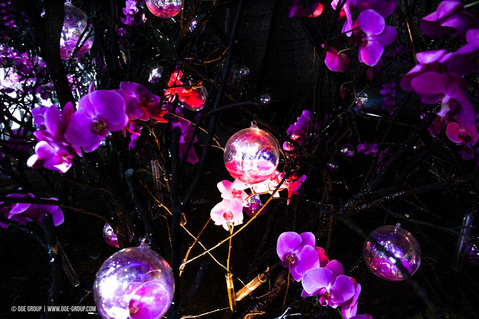 OGE-Flower-Show-upside-10