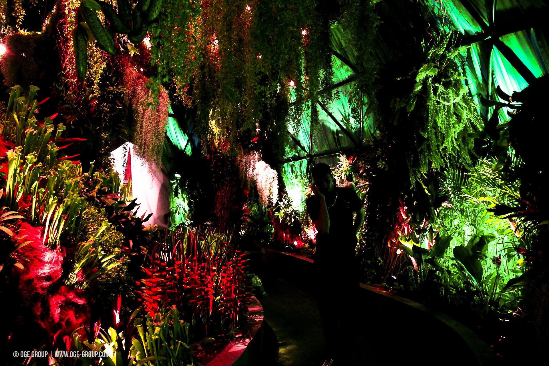 OGE-Flower-Show-Rainforest-4
