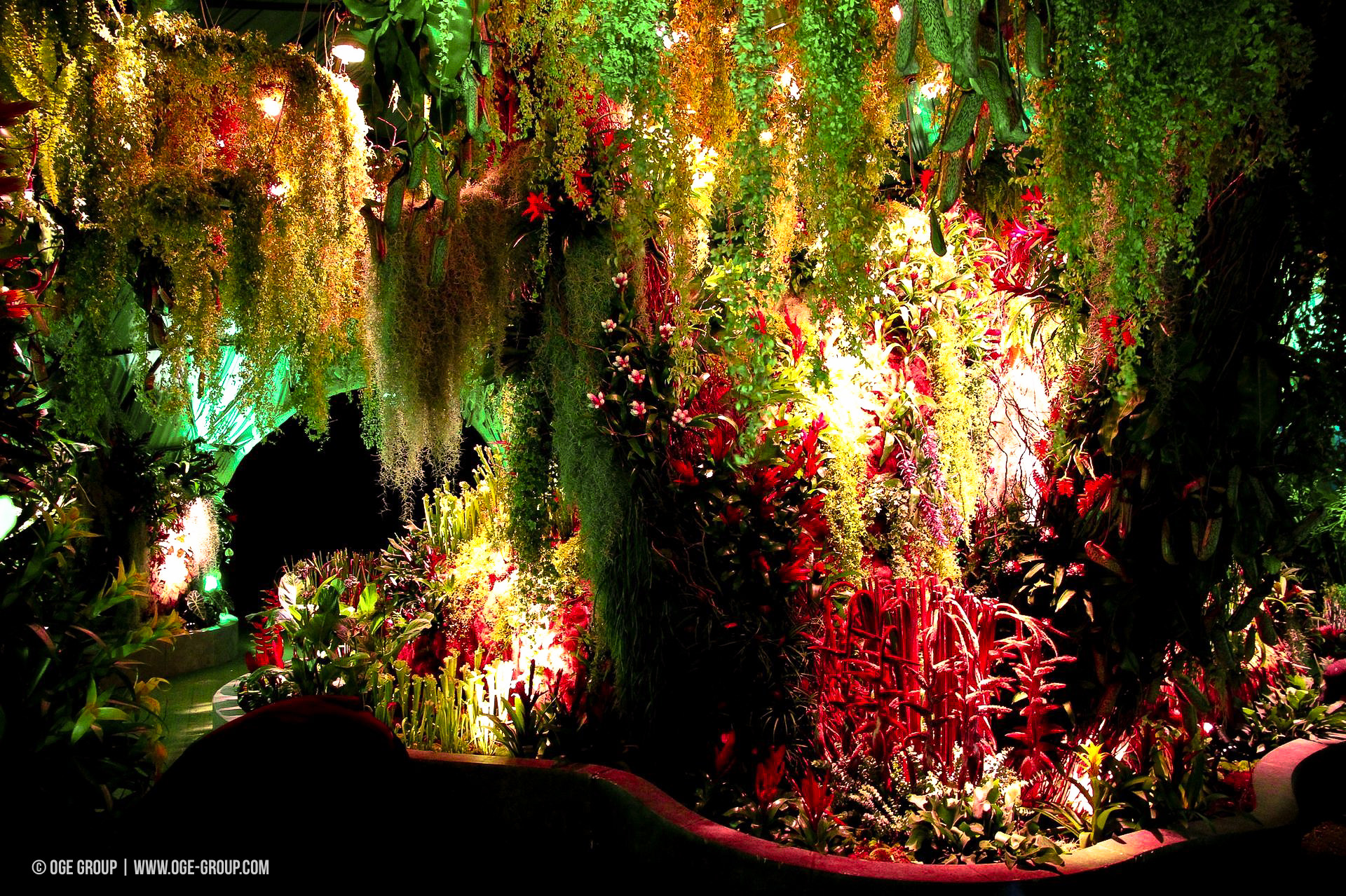 OGE-Flower-Show-Rainforest-8