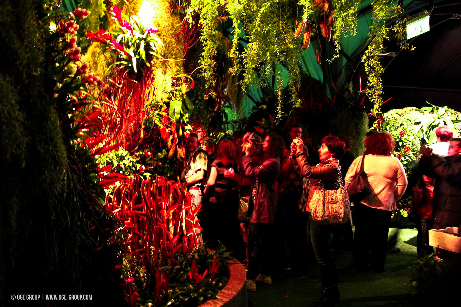 OGE-Flower-Show-Rainforest-7