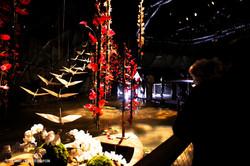 OGE-Flower-Show-Asian-12