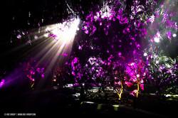 OGE-Flower-Show-upside-21