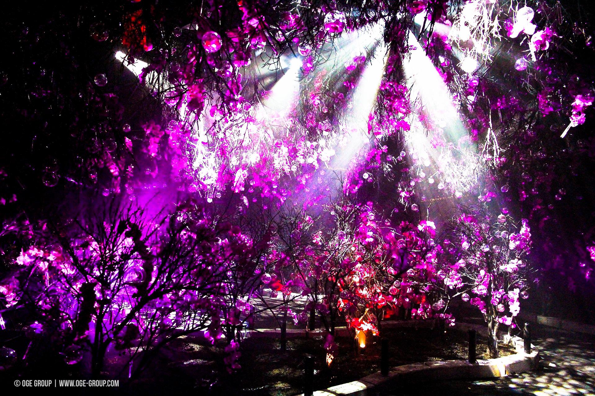 OGE-Flower-Show-upside-1