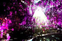OGE-Flower-Show-upside-22