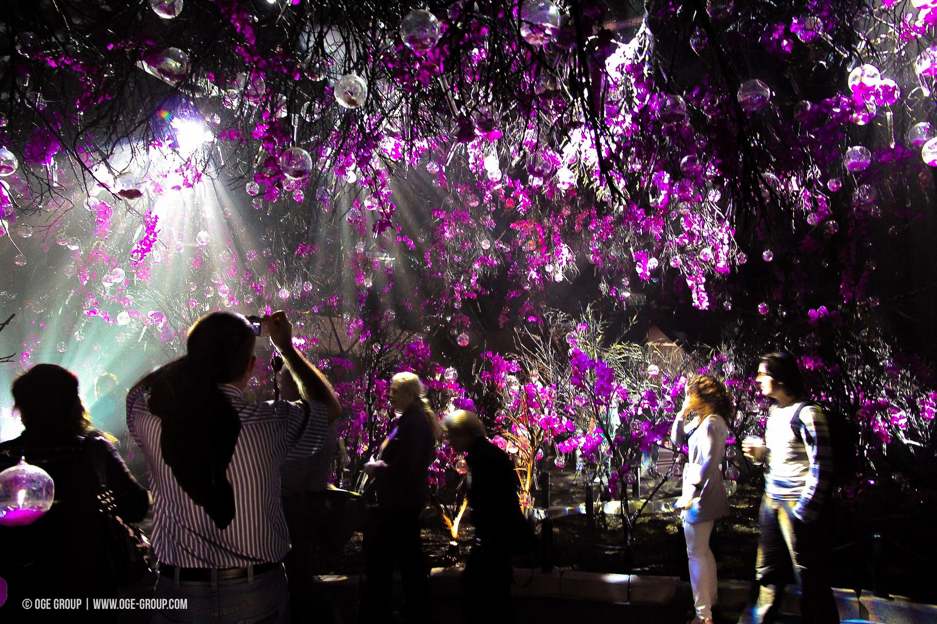 OGE-Flower-Show-upside-13