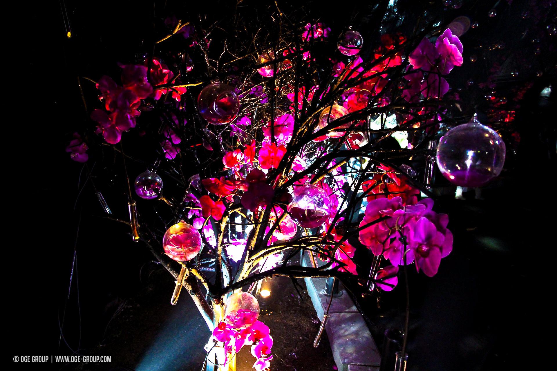 OGE-Flower-Show-upside-9