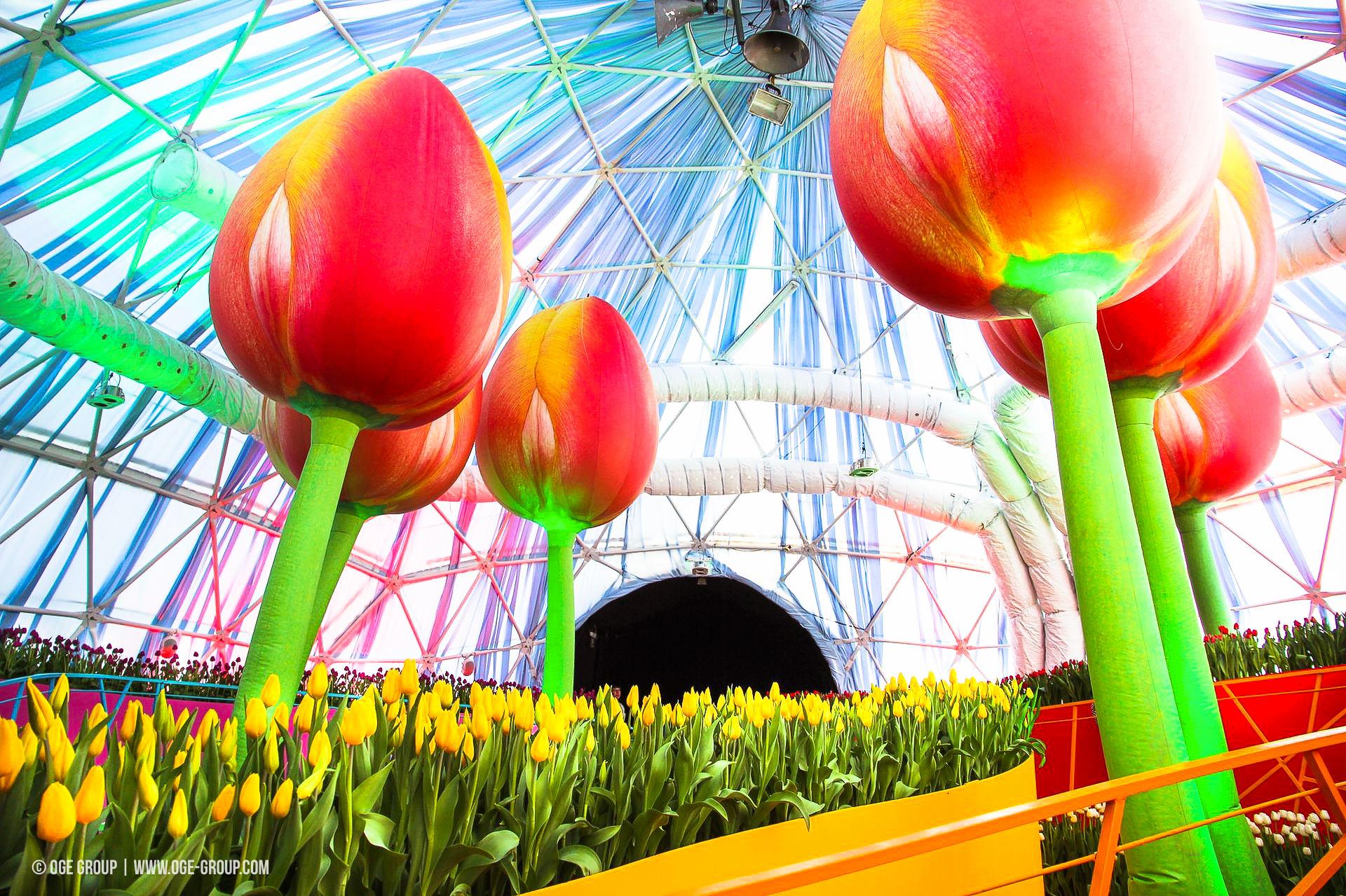 OGE-Flower-Show-Rainbow-8