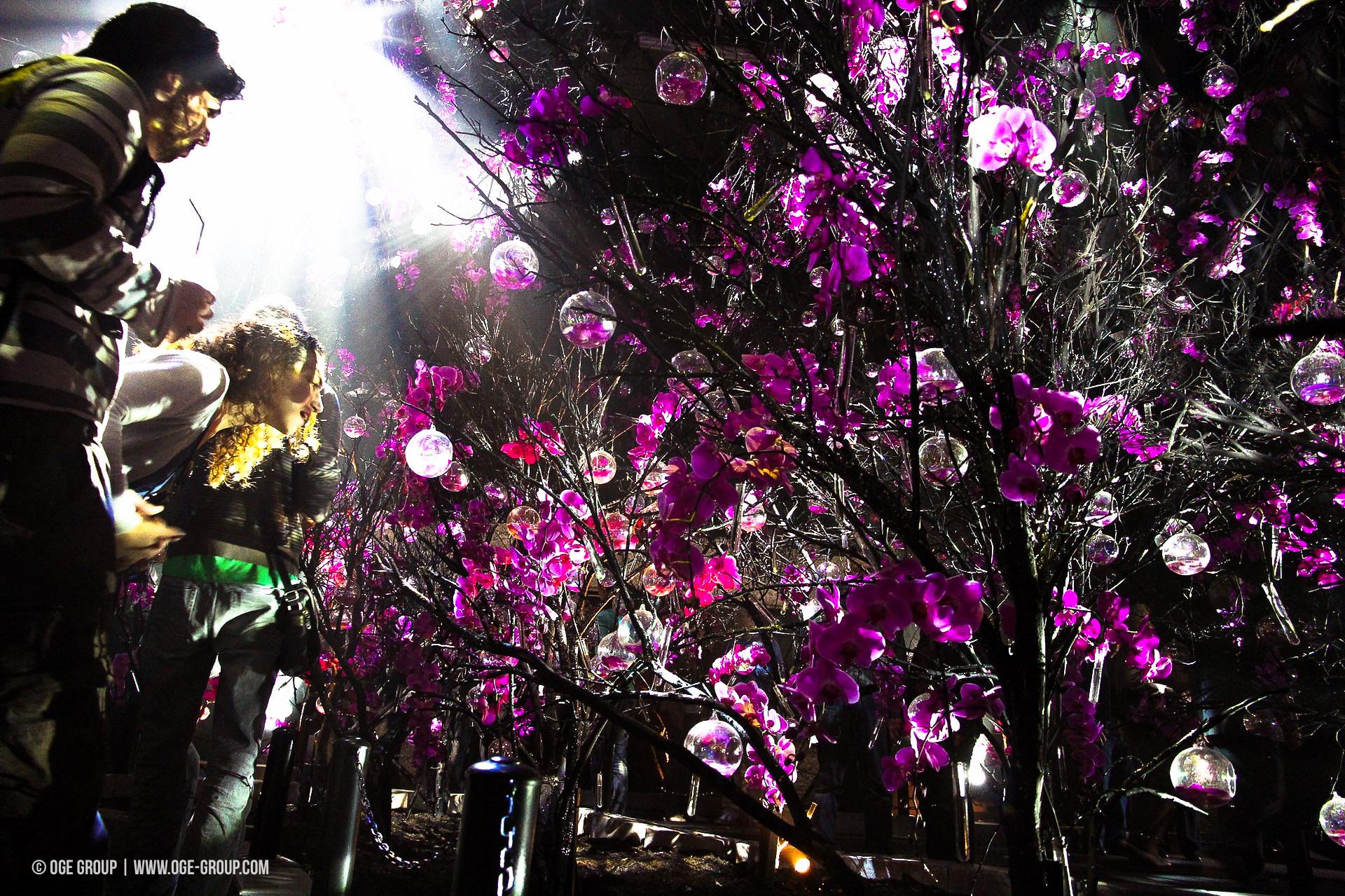 OGE-Flower-Show-upside-11