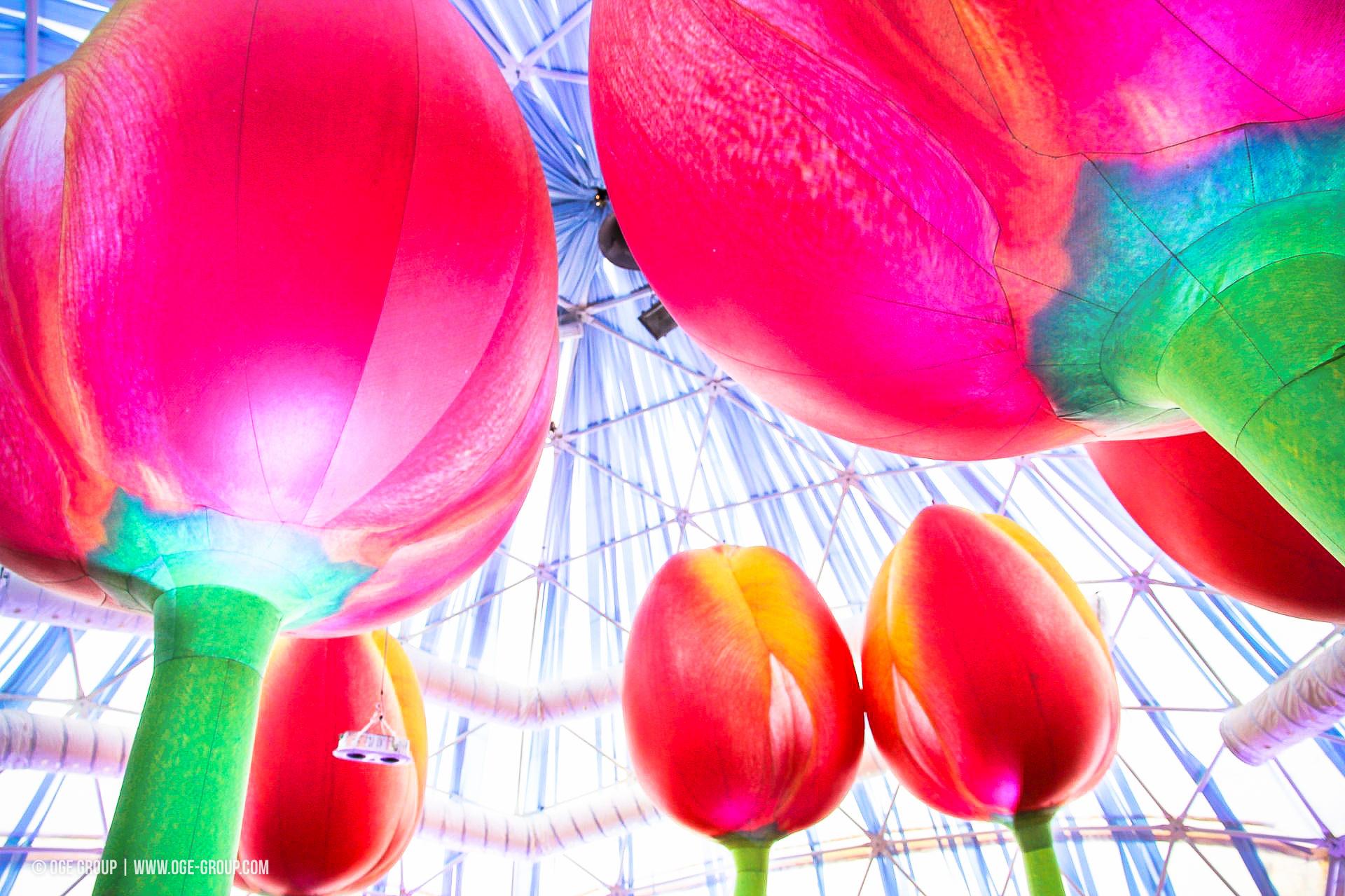 OGE-Flower-Show-Rainbow-14