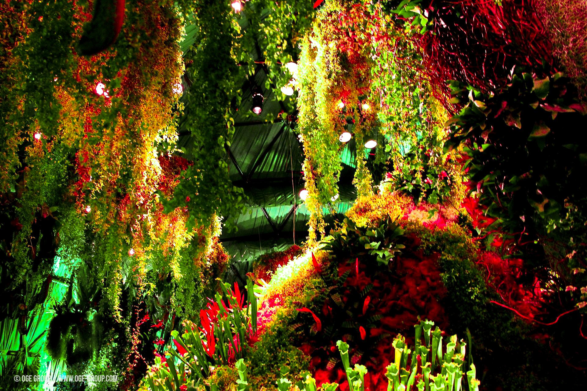 OGE-Flower-Show-Rainforest-5