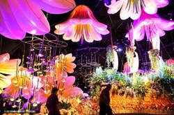 OGE-Flower-Show-Underwater-14