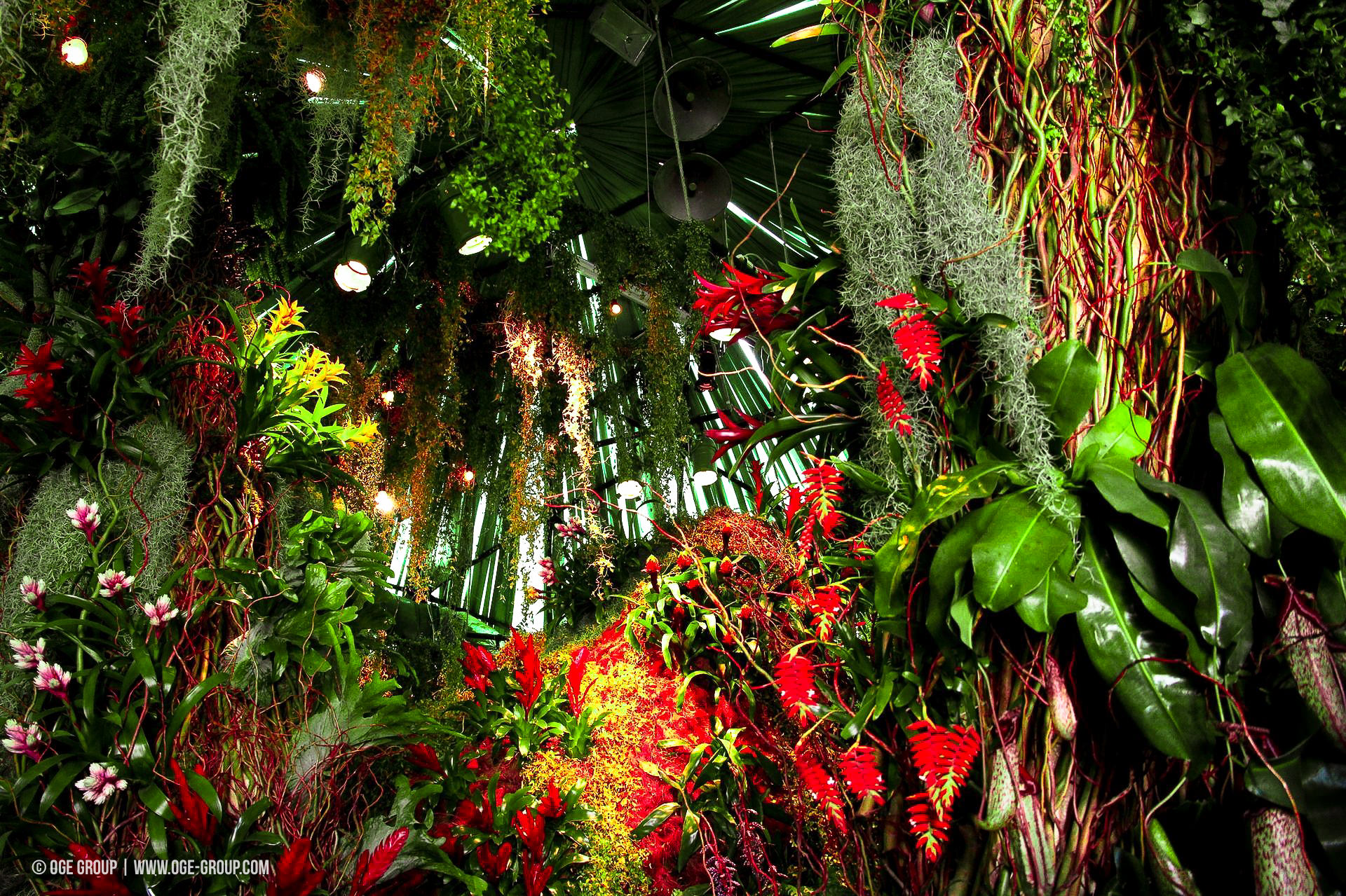 OGE-Flower-Show-Rainforest-13