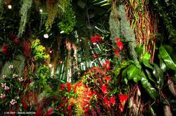 OGE-Flower-Show-Rainforest-13